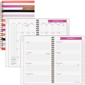 At-A-Glance Parasol Wkly/Mthly Planner