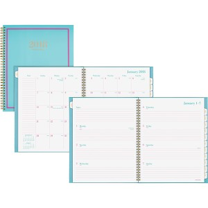 At-A-Glance Color Crush Wkly/Mthly Appmt Planner