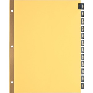 DIVIDERS,LEATHER TABS,MTHLY
