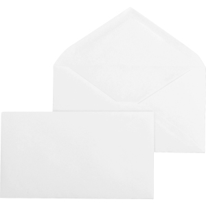 Business Source Regular Diag. Seam Business Envelopes