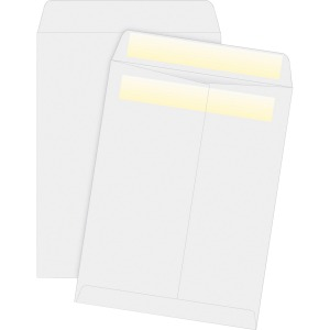 Business Source Press/Seal Catalog Envelopes