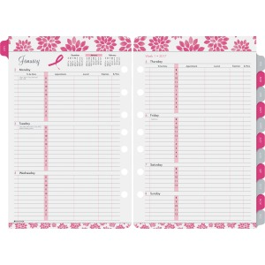 Day-Timer Pink Ribbon 2PPW Planner Refill