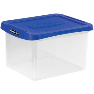 Fellowes Heavy-duty File Box
