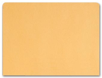 File Pocket Envelopes, 40lb. Kraft, Non-Printed