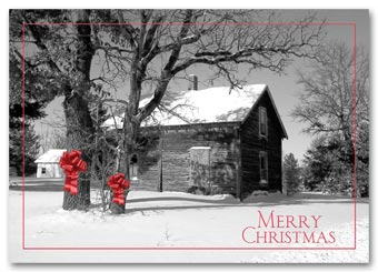 Barnyard Bows Holiday Postcard