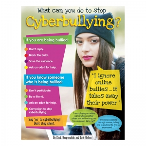CYBERBULLYING LEARNING CHART  SECONDARY