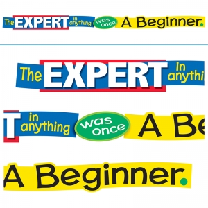 THE EXPERT IN ANYTHING WAS ONCE A  BEGINNER BANNER
