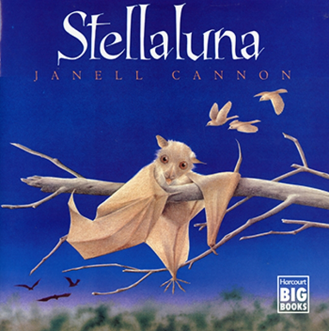 STELLALUNA BIG BOOK