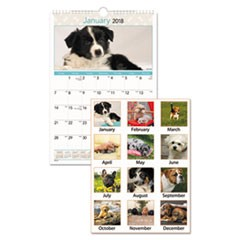 Puppies Monthly Wall Calendar, 12 x 17, 2018