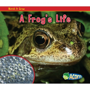 A FROGS LIFE