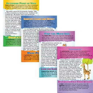 READING COMPREHENSION POSTER SET